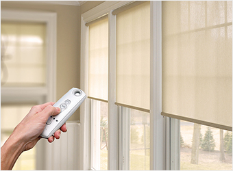 Motorized Roller Blinds (Somfy)